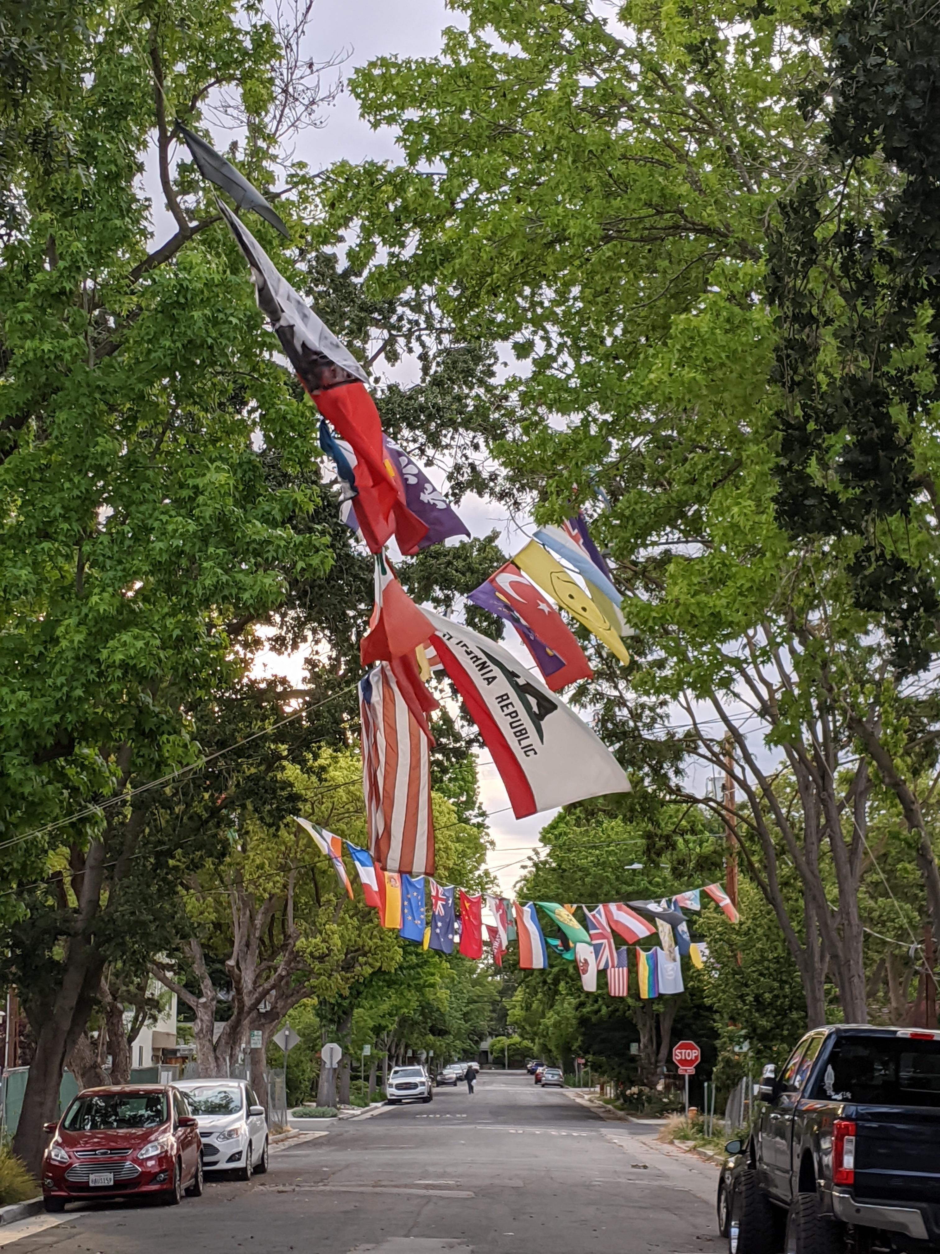 Neighborhood Flags 1