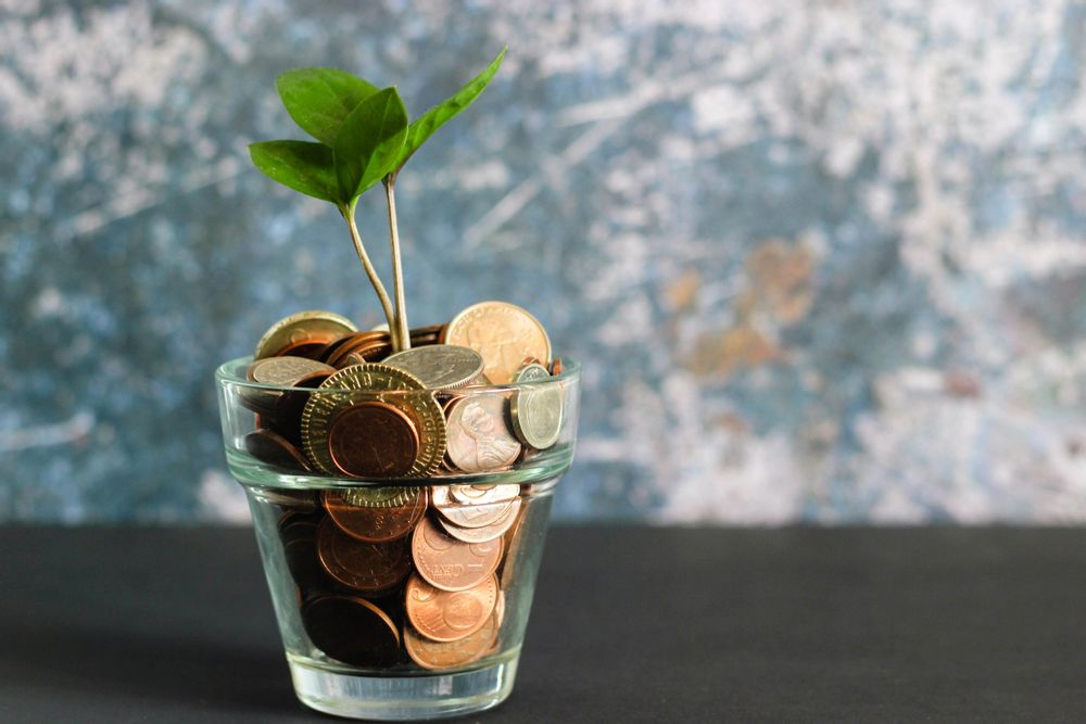 Plant on a table with bronze coins inside, sprouting a tree