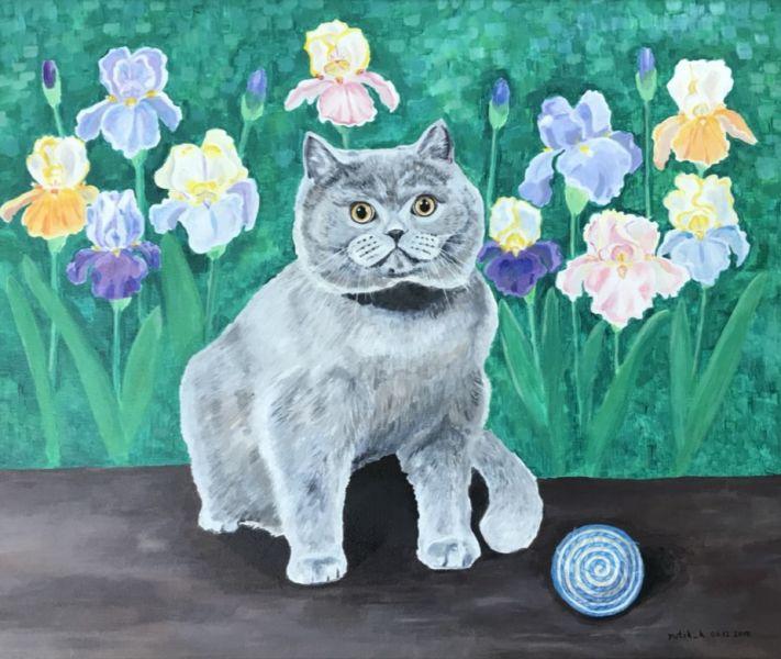 Cat and irises