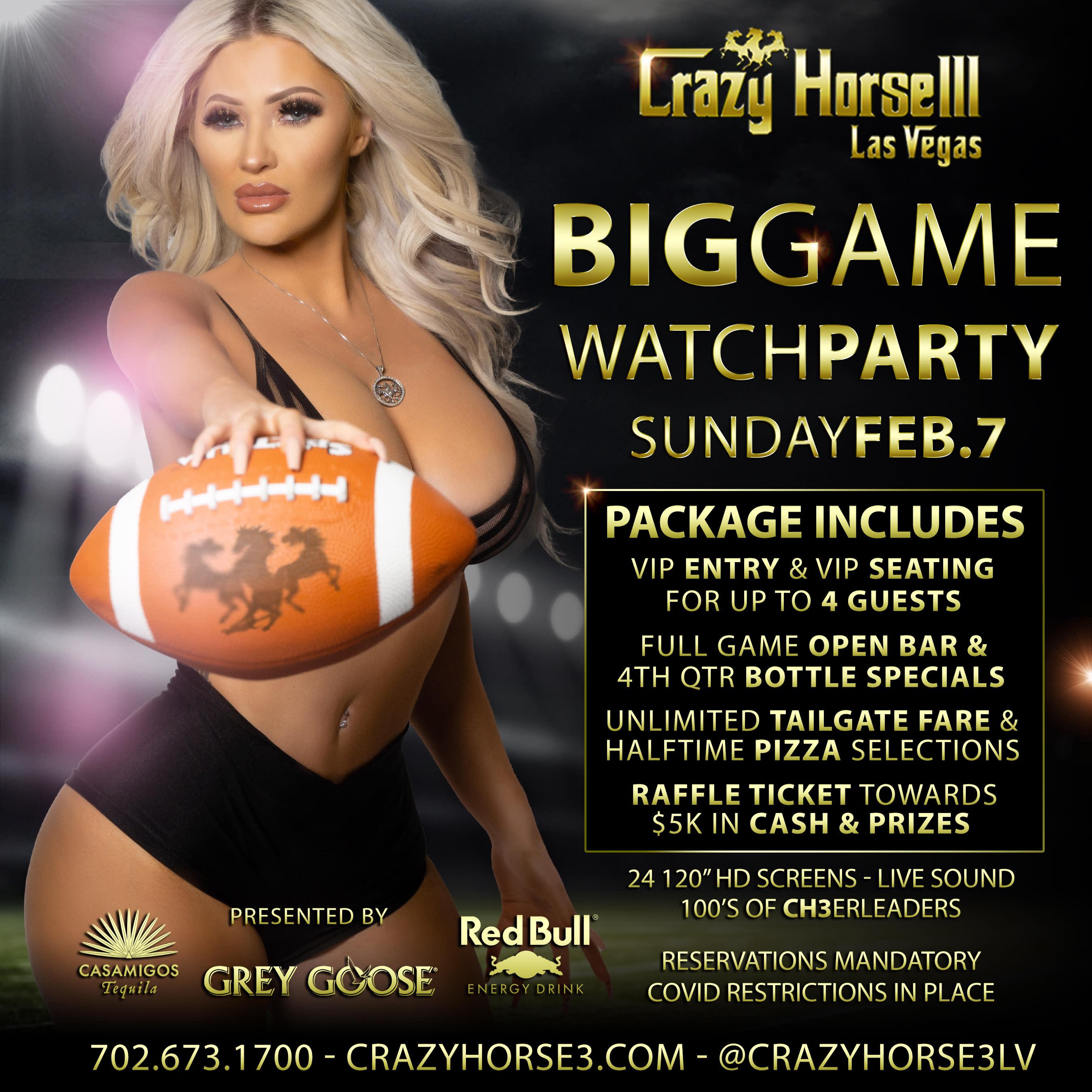 VIP Big Game Sunday<br/>February 7