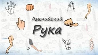 Рука на английском