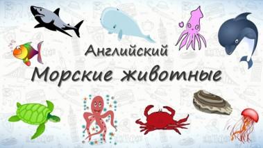 Морские животные на английском.