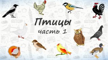 Птицы на английском. Часть 1.