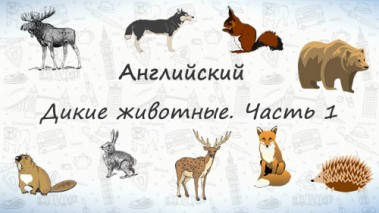 Дикие животные. Часть 1