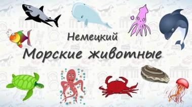 Морские животные на немецком.