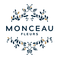 Monceau Fleurs - Blanc Mesnil