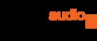 Caraudioshop.nl's logo