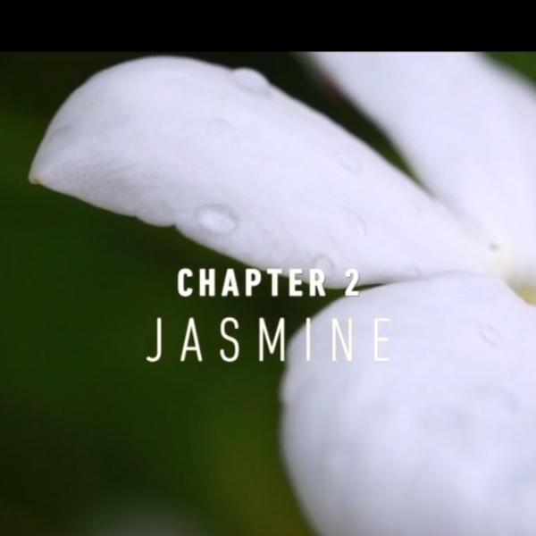 NaturalsTogether™ Chapter 2: Jasmine