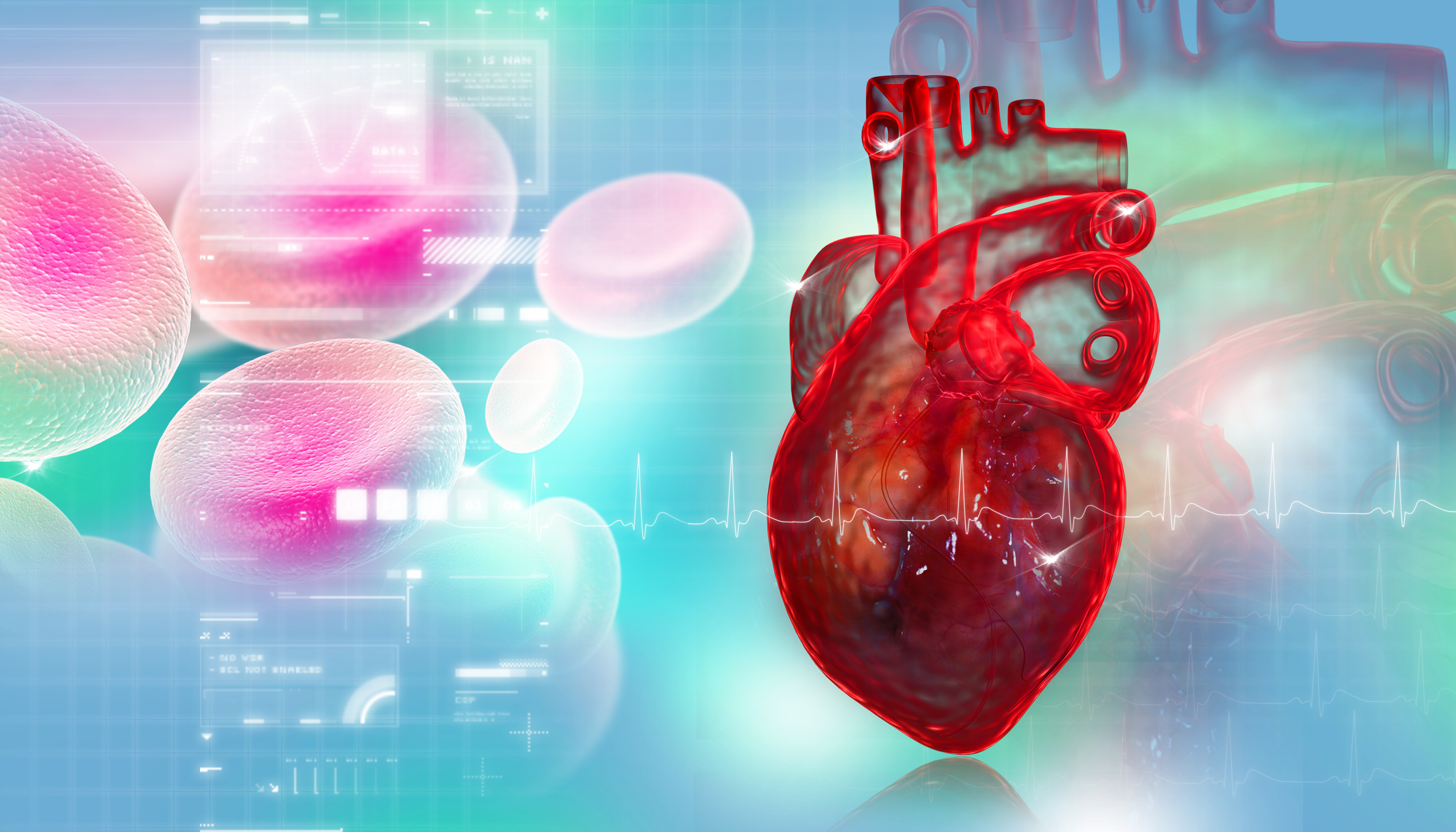 Heart & Platelets
