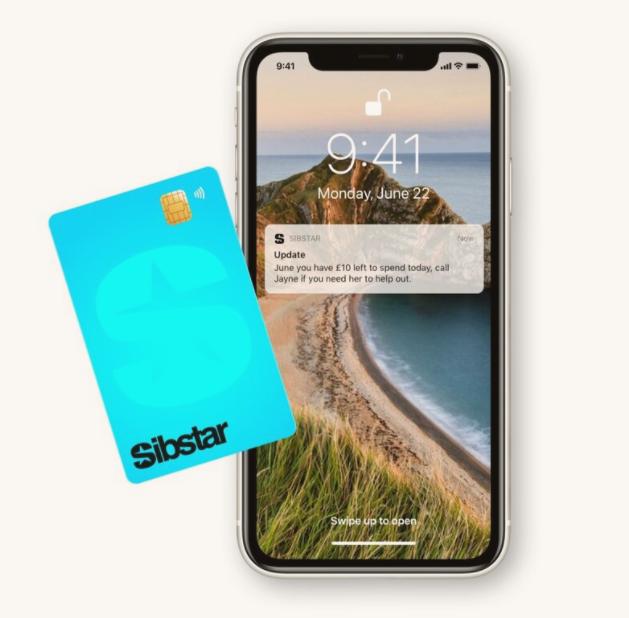 Smartphone and debit card