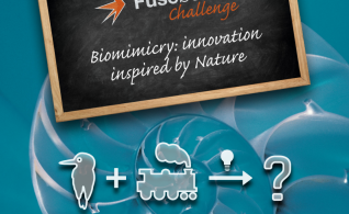 Image thumbnail for challenge entitled Biomimicry: Innovation inspired by Nature
