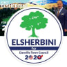 Mohamed Elsherbini | Danville, Danville Town Council, 2020 in California (CA) | Crowdpac