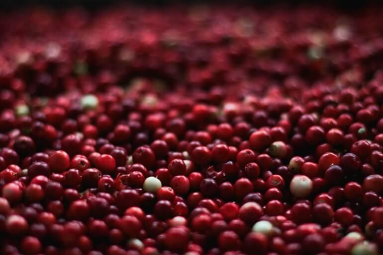DIY Cape Cod Cranberry Bitters