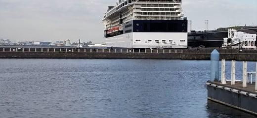 セレブリティミレニアム乗船記—ラウンジやバーの楽しみ大人の時間