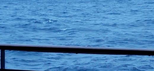 セレブリティミレニアム乗船記—クルーズ本来の楽しみ