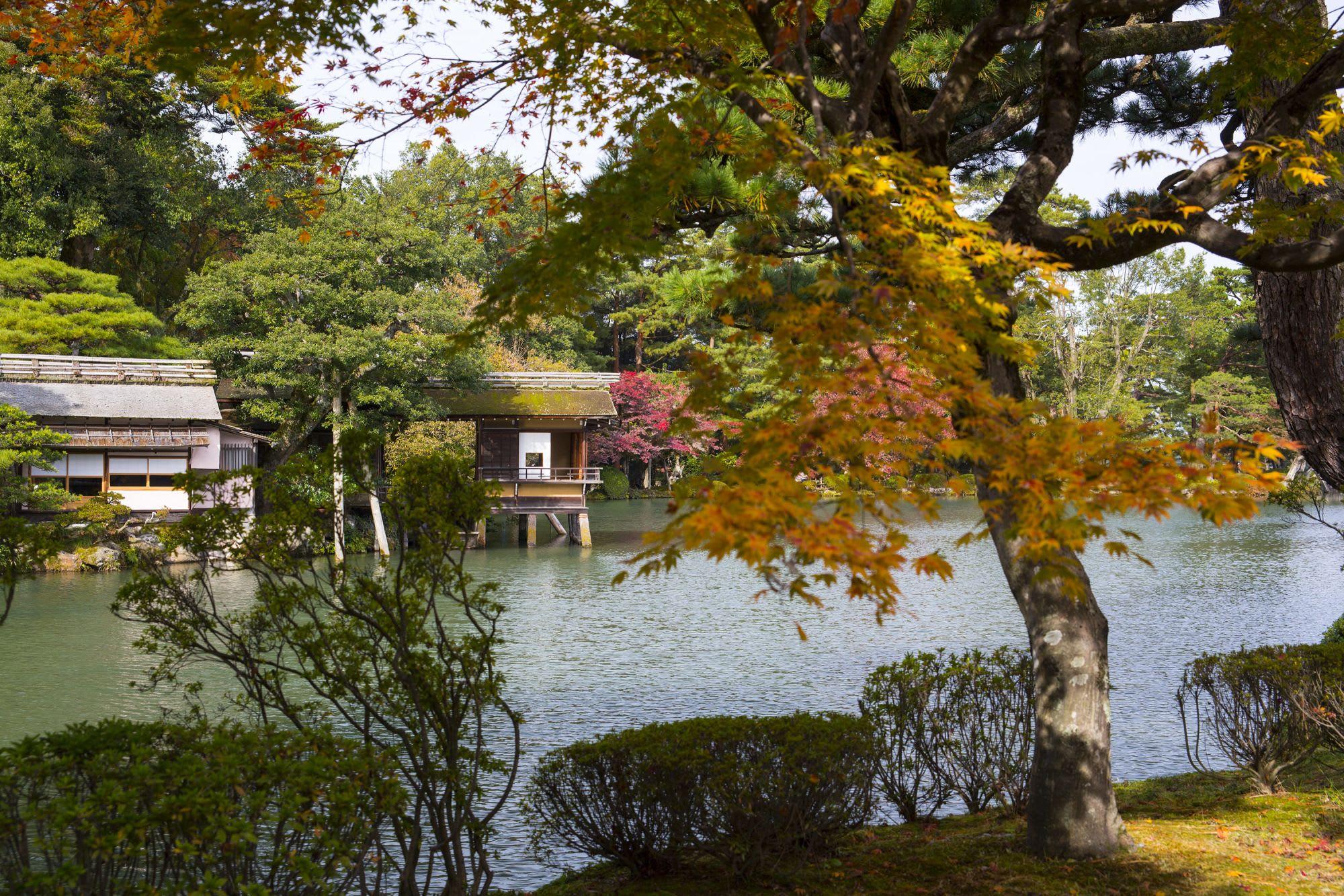 秋は木々が色づく贅沢なシーズンです。/ 写真提供:金沢市