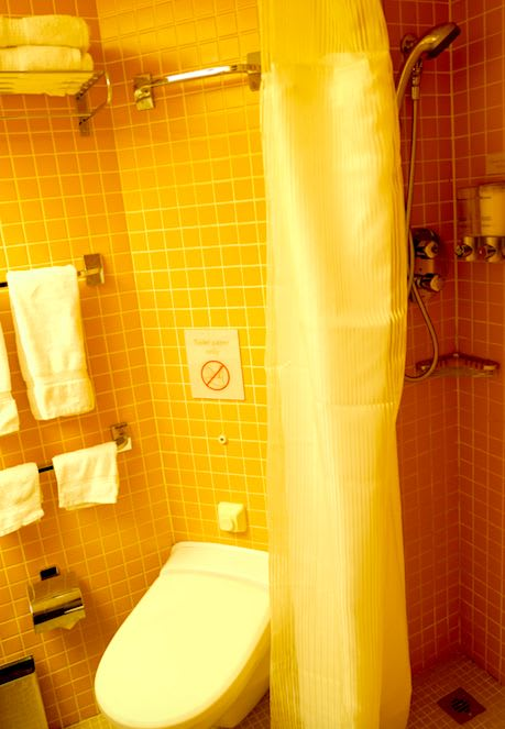 シャワールームも手狭ですが、問題ありません