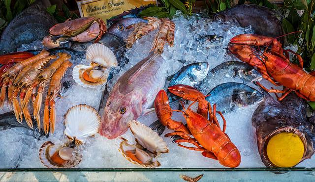 ホーランド・アメリカ、人気レストラン「SEL DE MER」を6客船に拡大出店