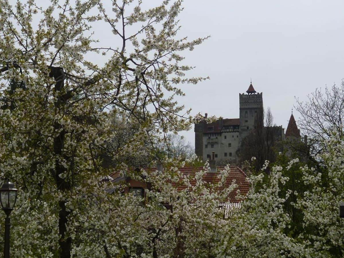 ブカレストからこれもシナイ城の後で行ったブラン城。ドラキュラのモデルといわれる王の城ですが、ここも花がきれいでした。 | ジュルジュ