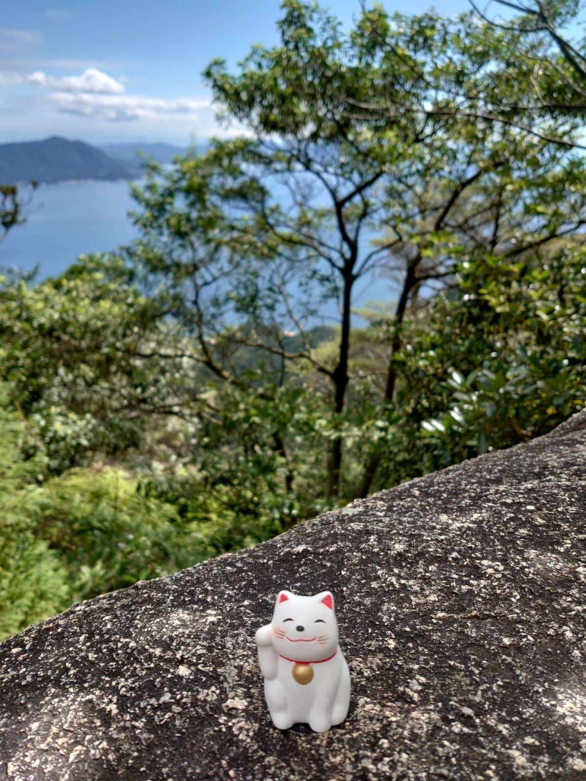 広島。宮島の弥山にて 弥山本堂まで行くのがやっとでした。霊火堂の消えずの火で沸かされた白湯を頂いて、猫様のおみくじを引いてきました。どの子も顔が違くてとても可愛らしいです。船室に飾って癒されていました♪ | 広島