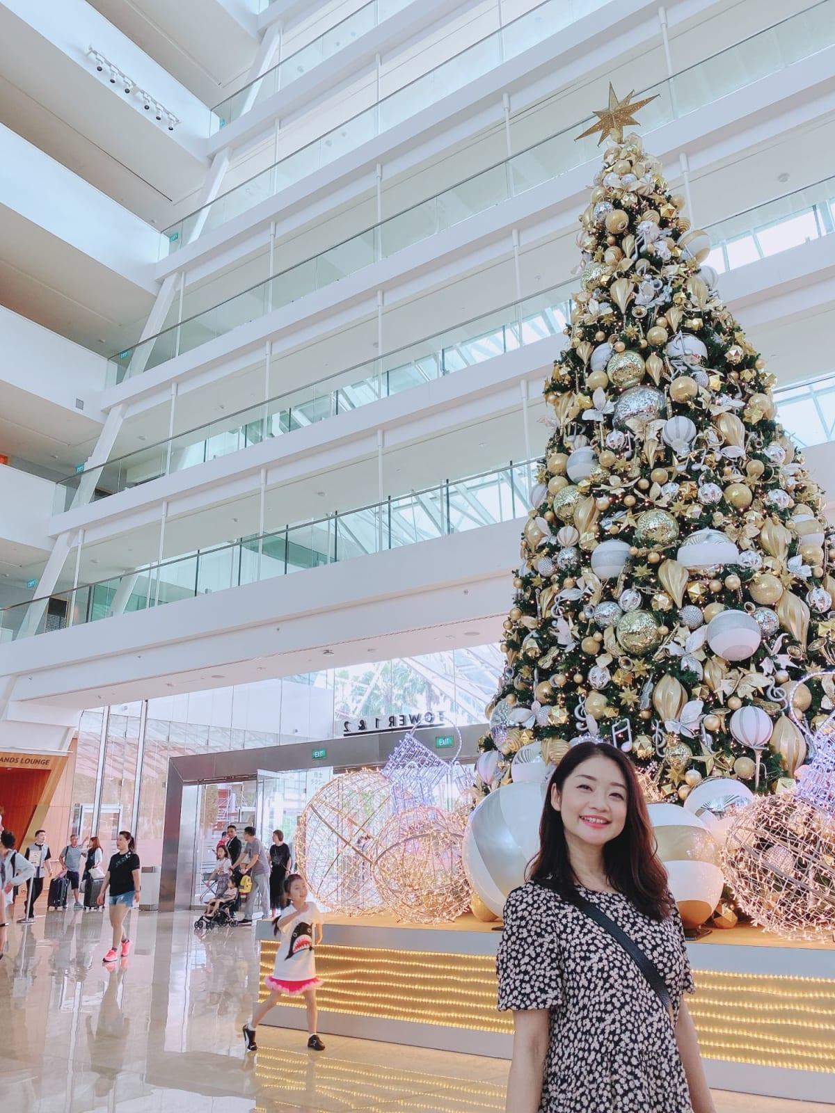 マリーナベイサンズにも大きなクリスマスツリー🌲 | シンガポール