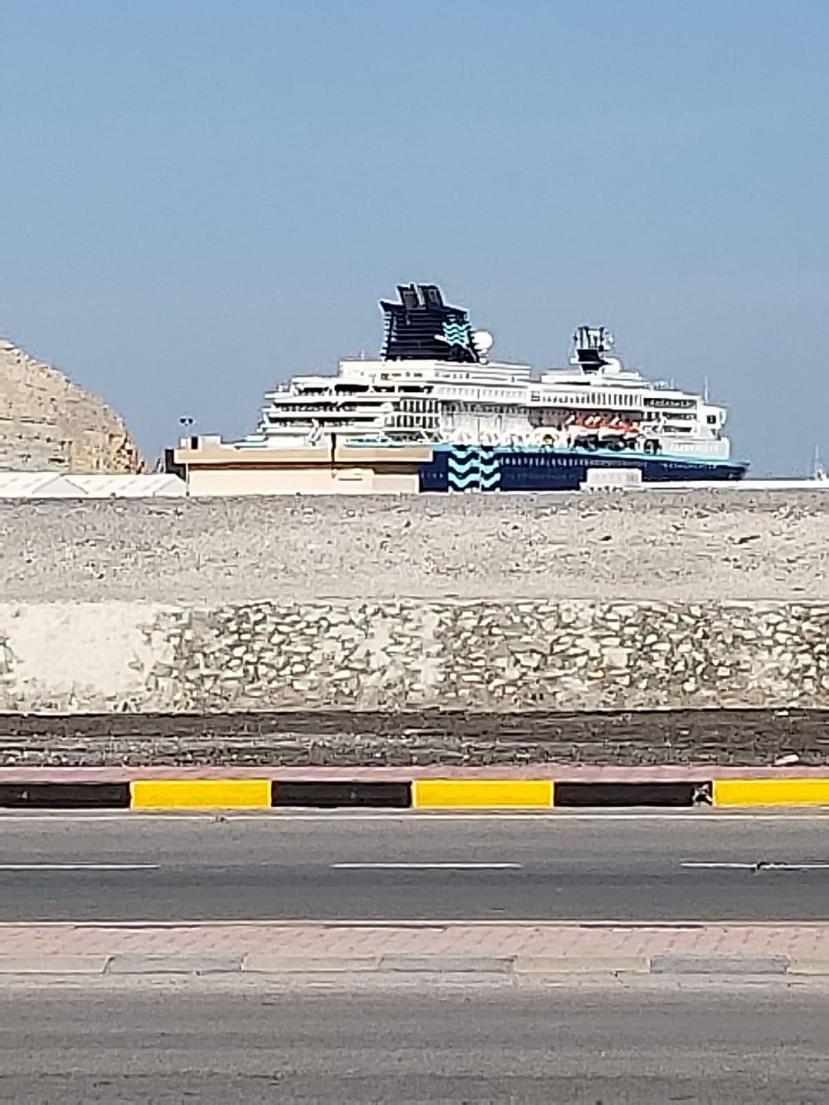 プルマントゥール・ホライゾン号 | 客船プルマントゥール・ホライズンの外観