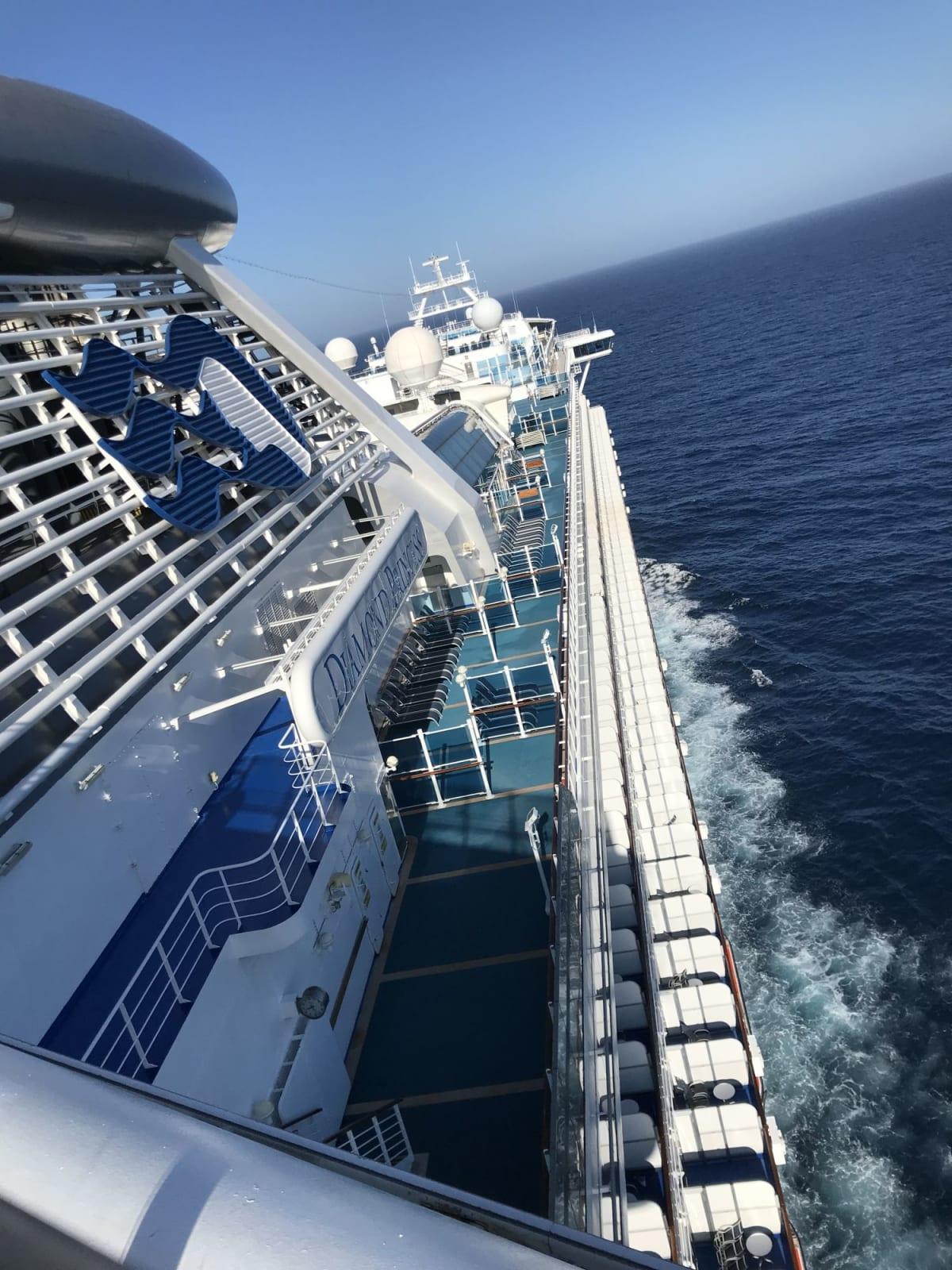大海原をいく   客船ダイヤモンド・プリンセスの外観、船内施設