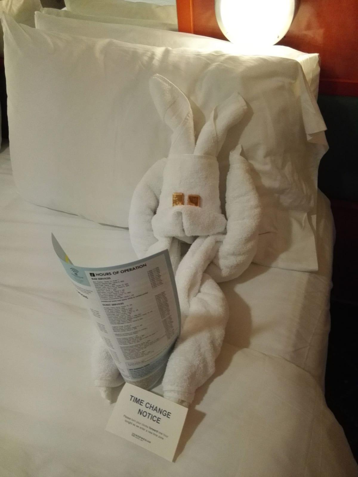 船内新聞もウサギが チェックを促してくれました。 | 客船ノルウェージャン・スターの客室