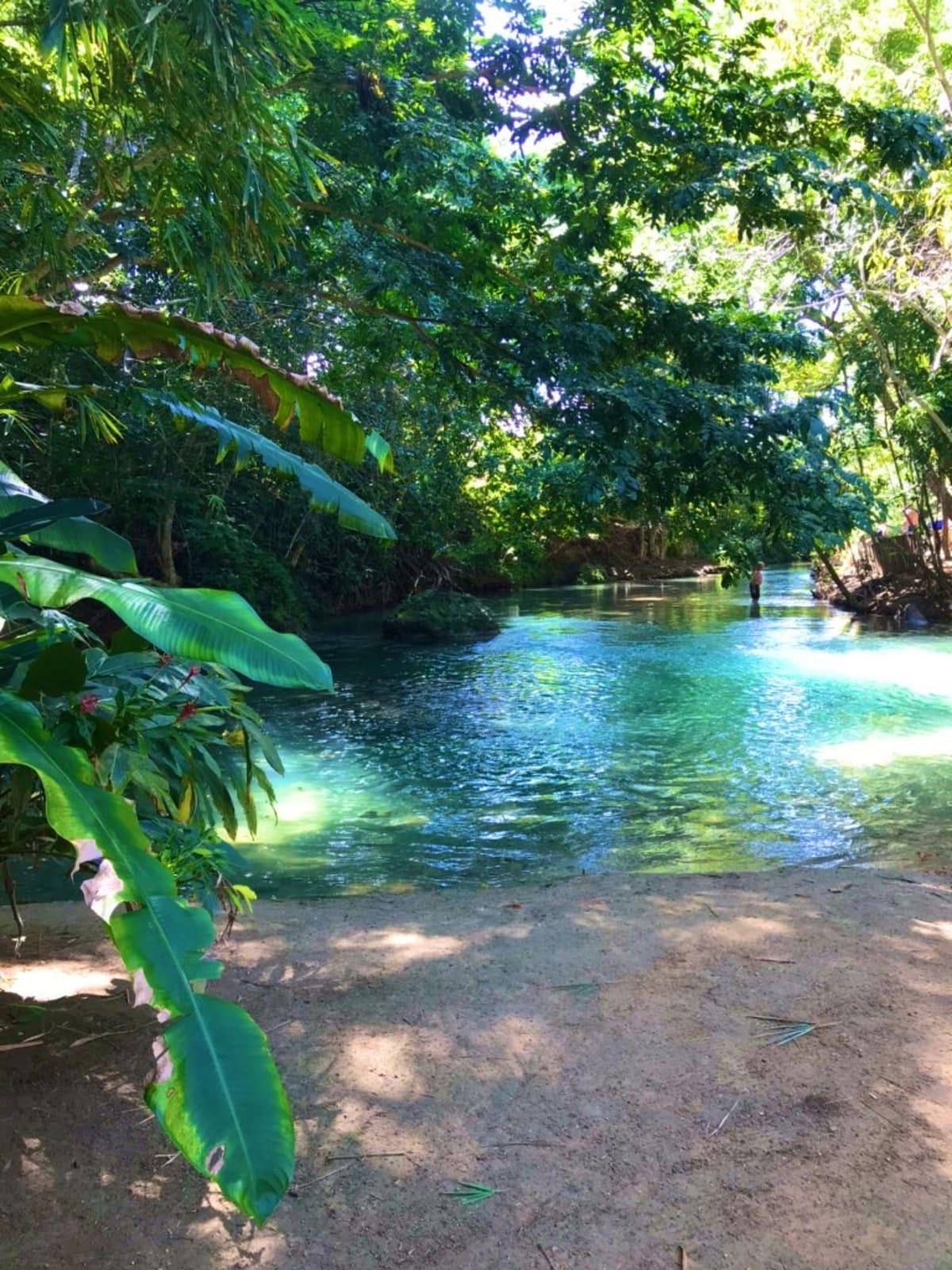 ジャマイカにて。川下りした川。水は冷たいが美しい川。 | ファルマス