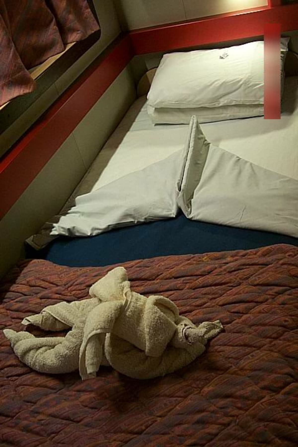 初めて見た時、超嬉しかったです。 | 客船カーニバル・エクスタシーの客室