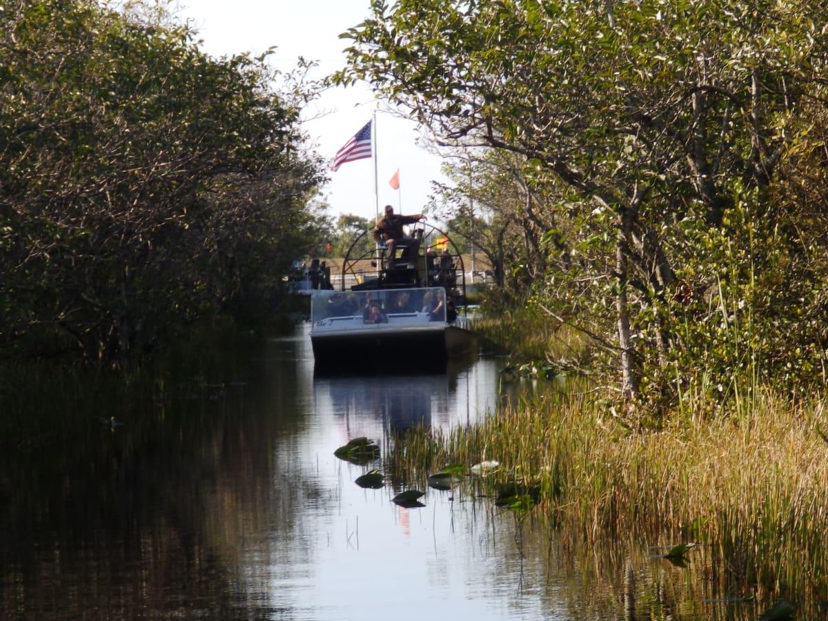 帰港後、エヴァーグレイス公園で浅瀬の湿地帯をプロペラ船でまさしくかっ飛びました🤯 ホントに🐊ワニにも遭遇🤣 後泊もあったので名物イシガニとバドワイザーでカリブ海クルーズを締めくくりました✌️