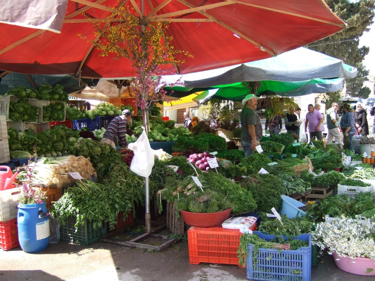 Day4#アラカチ#野菜フェスティバル | チェシュメ