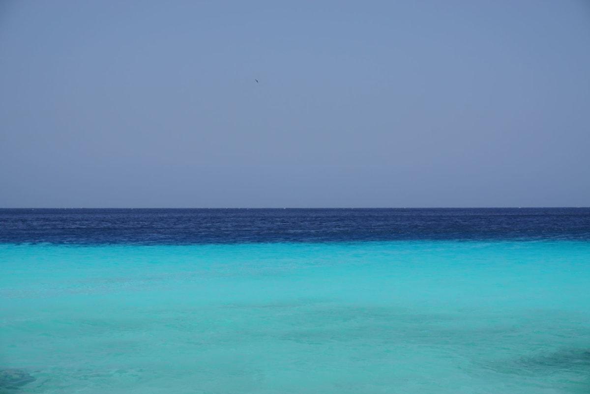 キュラソーの青い海 | ウィレムスタット(キュラソー島)