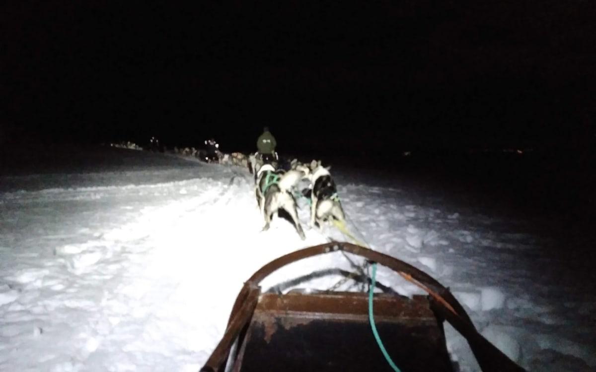 『北極のパリ』と称されるトロムソで念願の『犬ぞり』