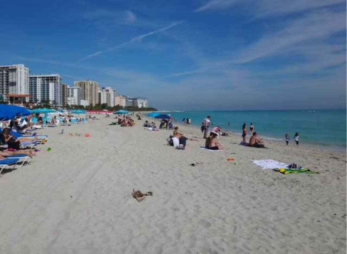 マイアミはアメリカ有数の観光地。前泊して観光しました。 | マイアミ(フロリダ州)