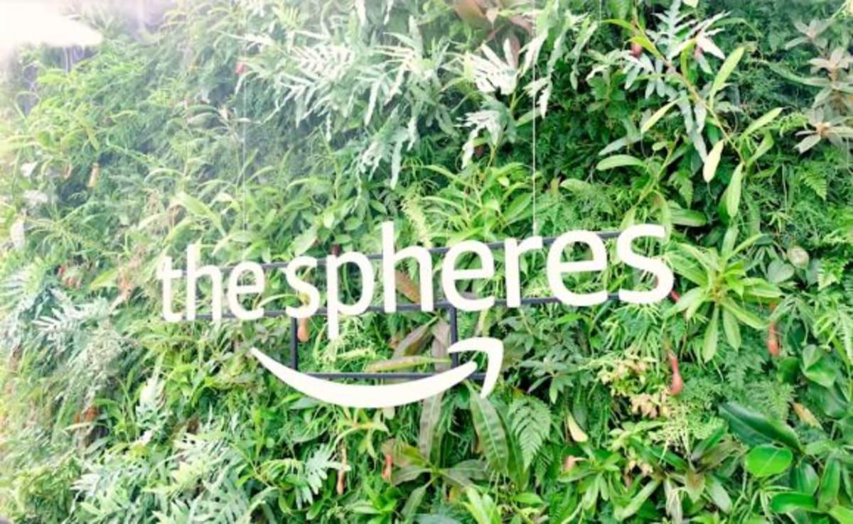AMAZON本社ツアーを予約していきました。温室で、ワークスペースの「the spheres」。世界中から観光客がきています。   シアトル(ワシントン州)