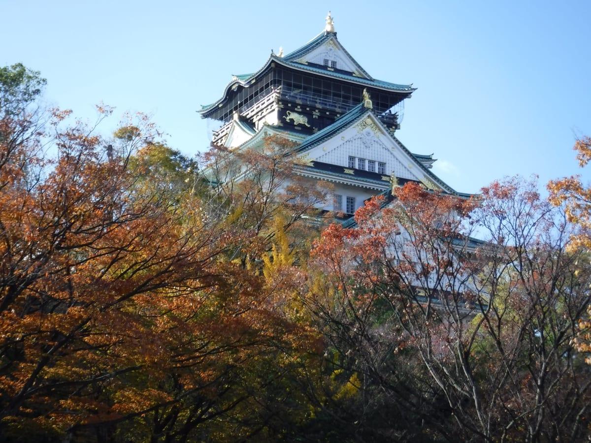 大阪城 ギリギリ紅葉が見れました。