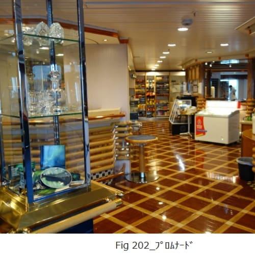 客船MSリカルド・ウィットの船内施設