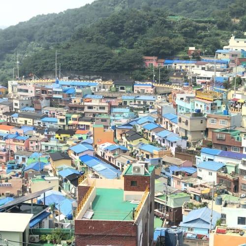 「甘川文化村&スカイウォーク」のエクスカーション  甘川(カムチョン)文化村。昔はスラム街だったが、今は「釜山のマチュピチュ」「韓国のサントリーニ」と呼ばれている。 インスタスポットになっている。   釜山