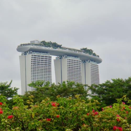 MRTのMarina South Pier駅から、この景色を見ながらクルーズターミナルまで10分ほど。 | シンガポール