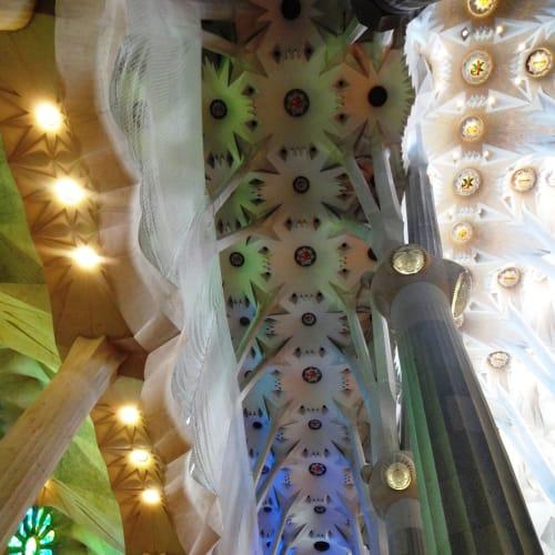 ステンドグラスの色に染まるサグラダ・ファミリアの素晴らしいシュロの葉の天井 刻々と色が変化していく様はとても幻想的でした。