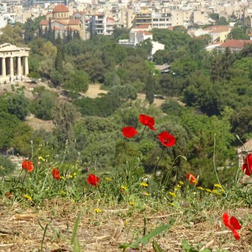 アテネ アクロポリス遺跡などには、飲み物を持って | ピレウス(アテネ)
