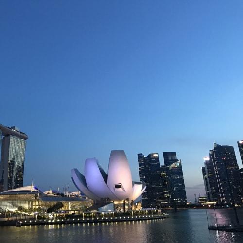 乗船前日はシンガポール1日観光   シンガポール
