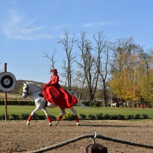 横乗りで優雅に馬を操る女性 | ブダペスト