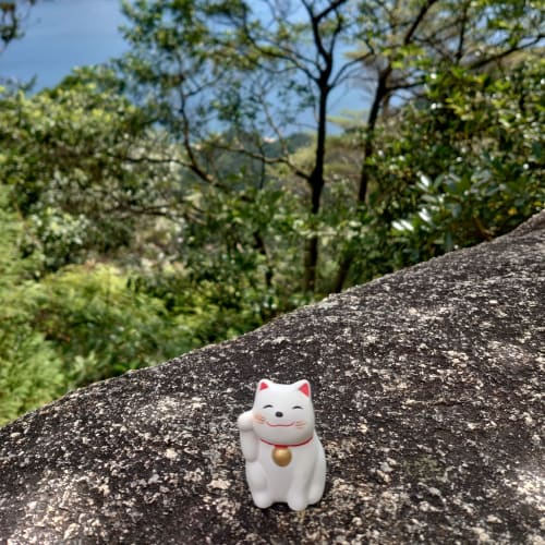 広島。宮島の弥山にて 弥山本堂まで行くのがやっとでした。霊火堂の消えずの火で沸かされた白湯を頂いて、猫様のおみくじを引いてきました。どの子も顔が違くてとても可愛らしいです。船室に飾って癒されていました♪