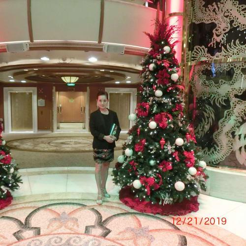 客船ダイヤモンド・プリンセスの乗客、船内施設