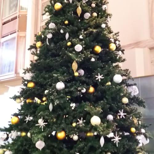 5階のプロムナードにはクリスマスツリーがありました。 | 客船エクスプローラー・オブ・ザ・シーズの船内施設