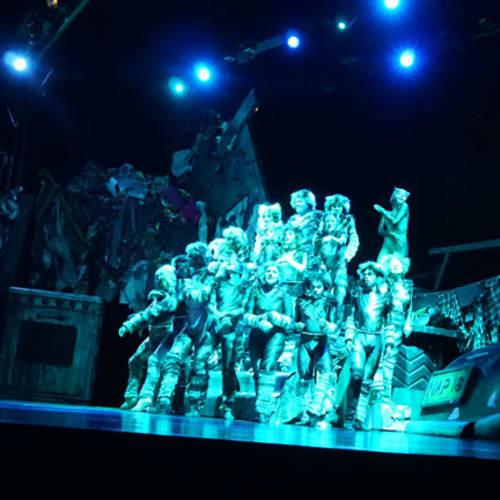 ミュージカル「キャッツ」の一コマです。 2幕での歌唱「メモリー」は泣けます! | 客船オアシス・オブ・ザ・シーズのアクティビティ、船内施設