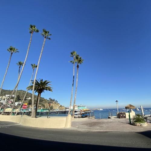雲ひとつない美しい青空です。 | サンタカタリナ島(カリフォルニア州)