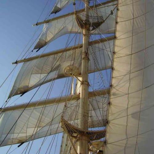 スターフライヤー | 客船スター・フライヤーの外観
